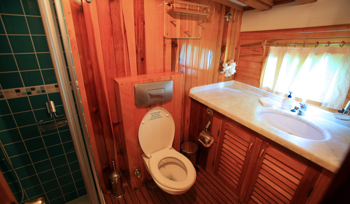 En suite bathroom with vanity in traditional wooden panelled finish